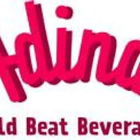 Adina World Beat Beverages is listed (or ranked) 2 on the list Companies Founded in San Francisco
