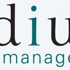 Indium Web Management is listed (or ranked) 5 on the list List of Online Marketing Companies