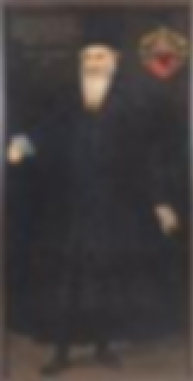 Portrait of Ján Krušić is listed (or ranked) 4 on the list List of Famous Giuseppe Arcimboldo Artwork