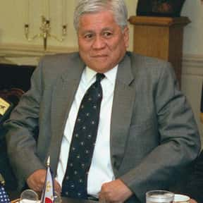 Albert del Rosario is listed (or ranked) 9 on the list List of Famous Philippines Politicians