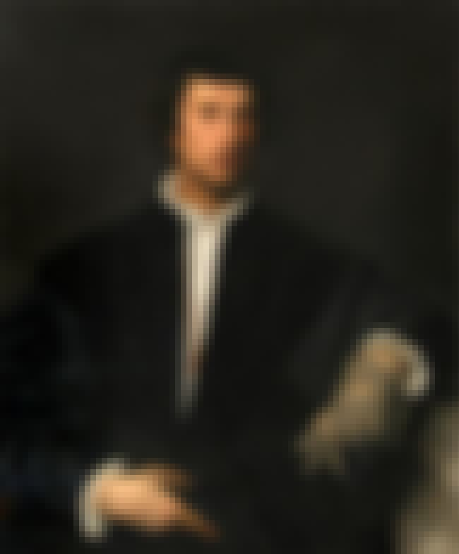 Man with a Glove is listed (or ranked) 3 on the list Famous Portraits by Titian