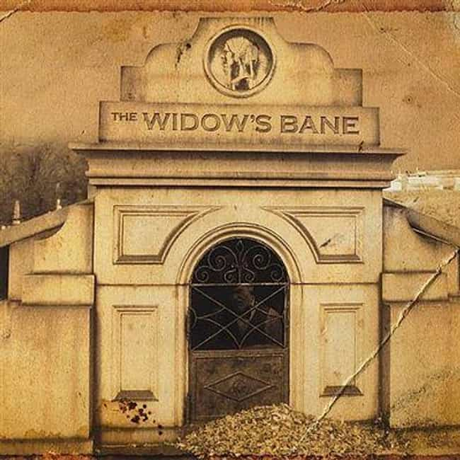 The Widow's Bane is listed (or ranked) 4 on the list The Best Sea Shanty Bands/Artists