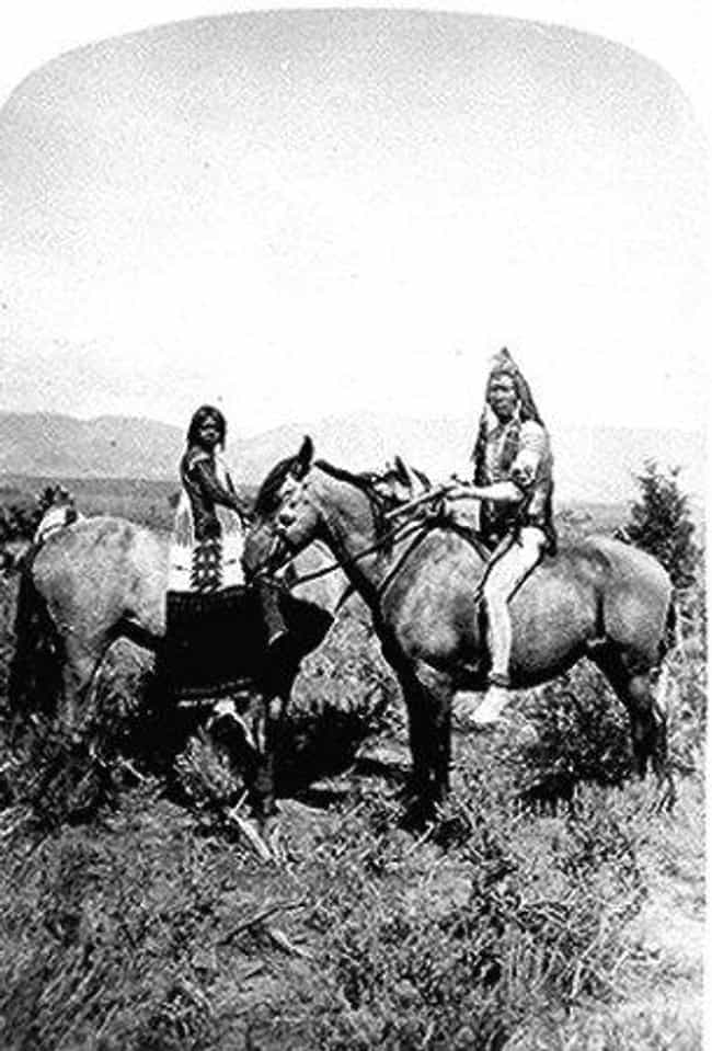 Black Hawk War is listed (or ranked) 4 on the list List Of Navajo Wars Battles