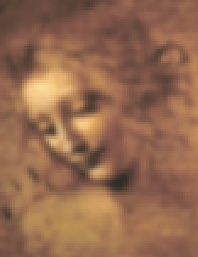 Head of a Woman is listed (or ranked) 6 on the list List of Famous Leonardo Da Vinci Artwork