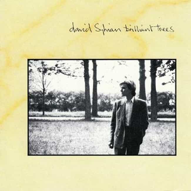 Brilliant Trees is listed (or ranked) 3 on the list The Best David Sylvian Albums of All Time