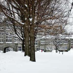 Bryn Mawr College is listed (or ranked) 7 on the list The Best Womens Colleges in the US