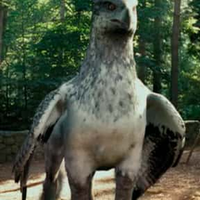 Buckbeak is listed (or ranked) 15 on the list The Greatest Fictional Pets You Wish You Could Actually Own