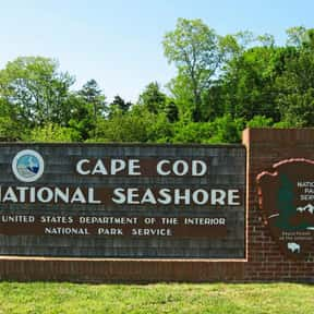 Cape Cod National Seashore is listed (or ranked) 18 on the list The Best Of The Most Visited Tourist Destinations in America