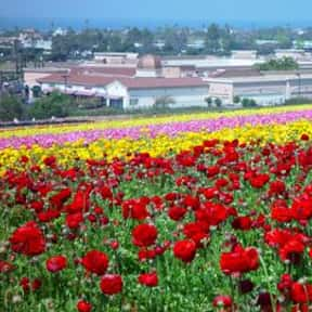 Carlsbad is listed (or ranked) 20 on the list The Best Cities for Retirement