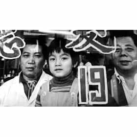 Chinatown: Immigrants In America