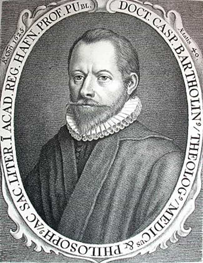 Famous physicians from denmark list of top danish physicians caspar bartholin the elder is listed or ranked 2 on the list famous physicians sciox Choice Image