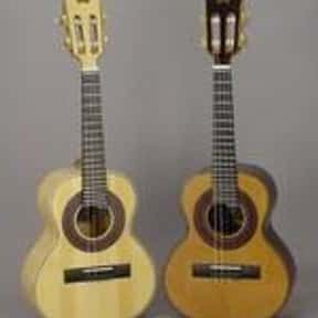 Cavaquinho is listed (or ranked) 16 on the list Plucked String Instrument - Instruments in This Family
