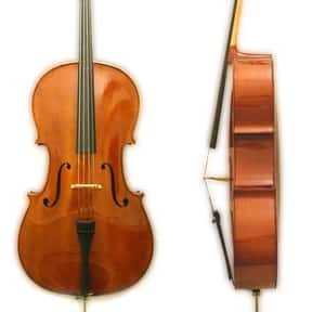 Cello is listed (or ranked) 2 on the list String instrument - Instruments in This Family