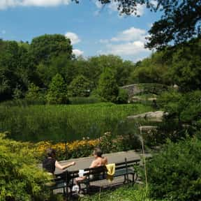 Central Park is listed (or ranked) 3 on the list The Top Must-See Attractions in New York