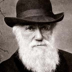 Charles Darwin is listed (or ranked) 1 on the list List of Famous Biologists