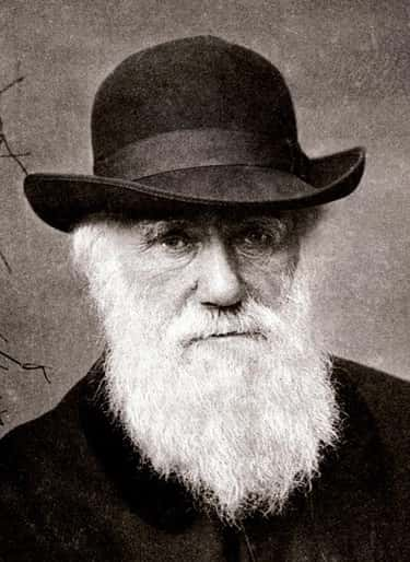 Charles Darwin is listed (or ranked) 2 on the list List of Famous Evolutionary Biologists