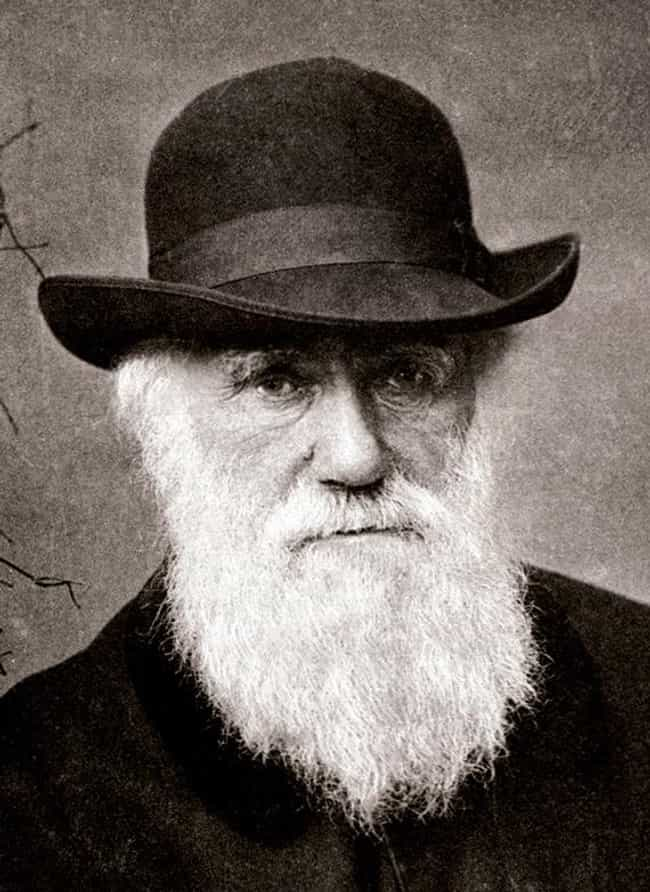 Charles Darwin is listed (or ranked) 2 on the list List of Famous Marine Biologists