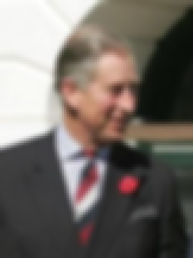 Charles, Prince of Wales is listed (or ranked) 4 on the list Members of the British Royal Family