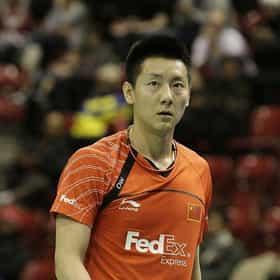 Chen Jin