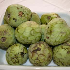 Cherimoya is listed (or ranked) 22 on the list The Best Tropical Fruits