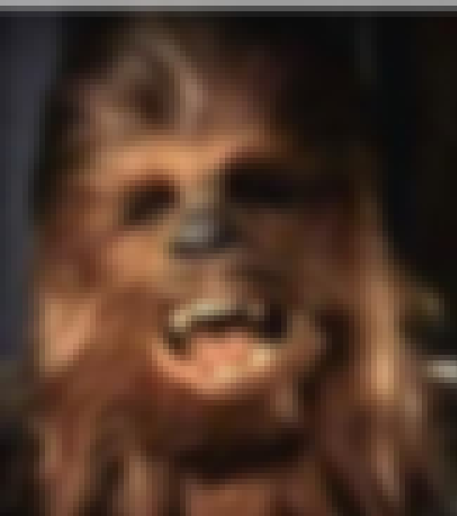 Chewbacca is listed (or ranked) 1 on the list MTV Lifetime Achievement Award Winners List