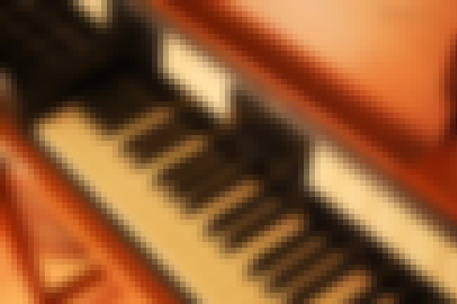 Chord organ is listed (or ranked) 1 on the list Organ - Instruments in This Family