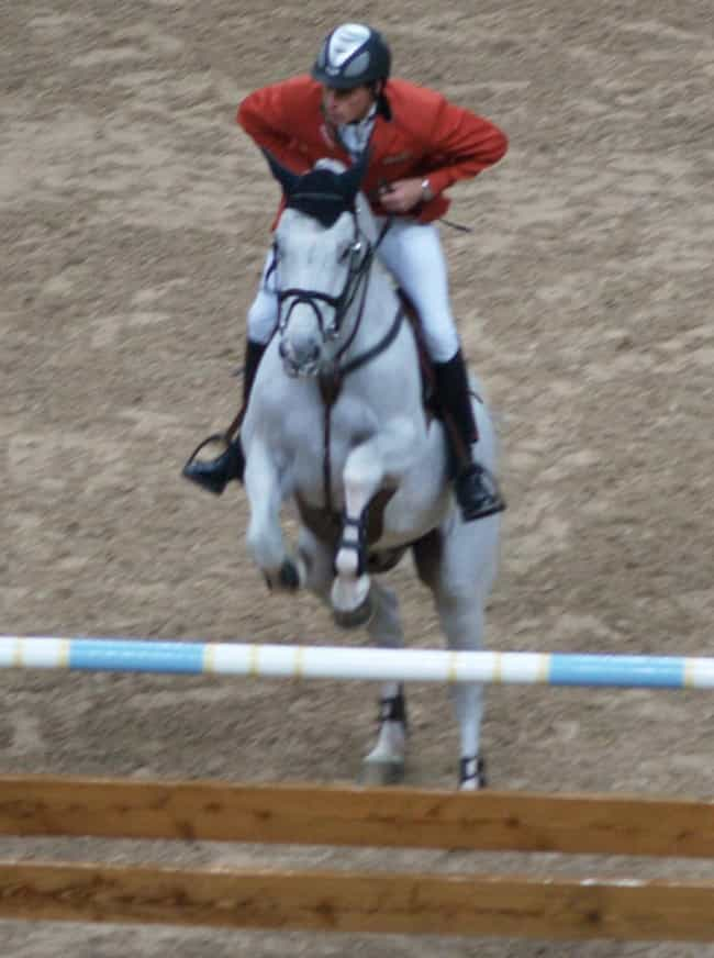 Christian Ahlmann is listed (or ranked) 3 on the list Famous Equestrians from Germany