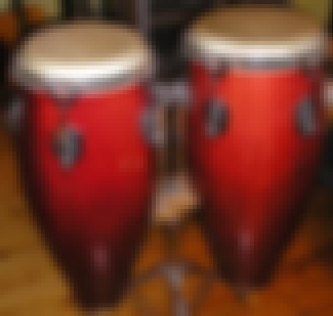 Conga is listed (or ranked) 2 on the list Drums - Instruments in This Family