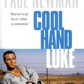 Cool Hand Luke is listed (or ranked) 5 on the list The Best Movies Roger Ebert Gave Four Stars