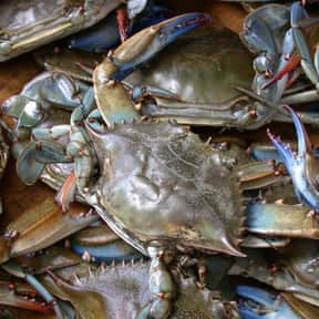 Crab is listed (or ranked) 6 on the list All Low Carbohydrate Foods