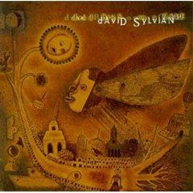 Dead Bees on a Cake is listed (or ranked) 4 on the list The Best David Sylvian Albums of All Time