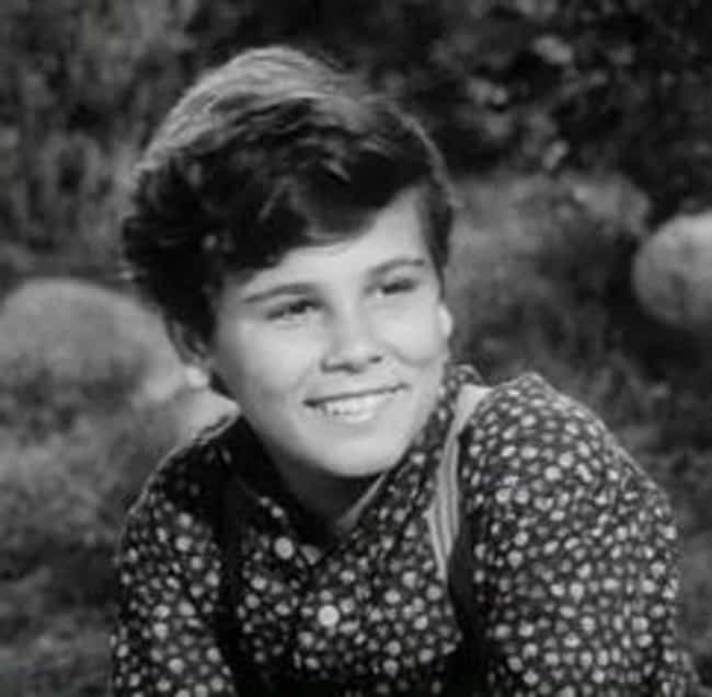Dean Stockwell is listed (or ranked) 3 on the list The Langoliers Cast List