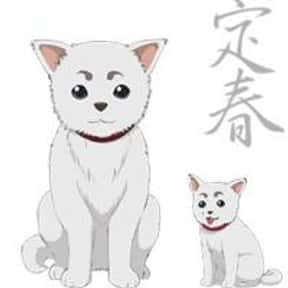 Sadaharu is listed (or ranked) 9 on the list List of All Gin Tama Characters, Best to Worst