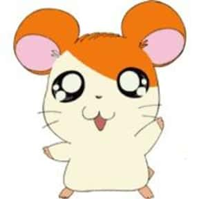Hamtaro is listed (or ranked) 16 on the list The Best Animal Characters in Anime