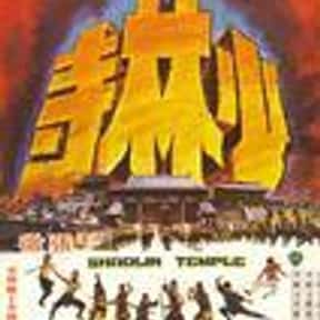 Shaolin Temple is listed (or ranked) 20 on the list The Best Kung Fu Movies of the 1970s