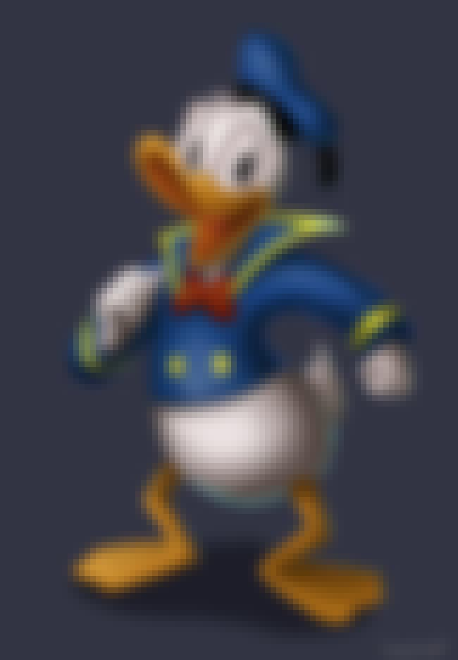Donald Duck is listed (or ranked) 2 on the list Main Mickey Mouse Chracters