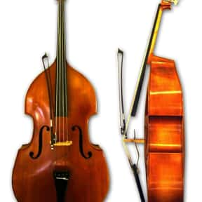 Double bass is listed (or ranked) 4 on the list String instrument - Instruments in This Family