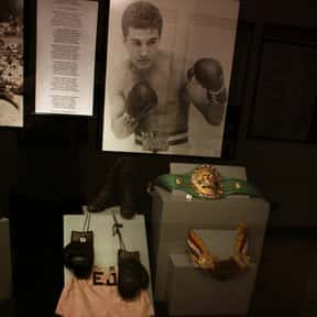 Éder Jofre is listed (or ranked) 1 on the list Famous Boxers from Brazil