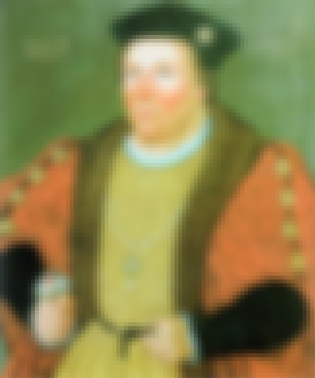 Edward Stafford, 3rd Duke of B... is listed (or ranked) 4 on the list All Of Henry VIII's Closest Associates And How He Had Them Killed