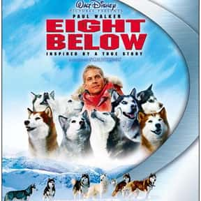 Eight Below is listed (or ranked) 10 on the list The Best Dog Movies for Kids