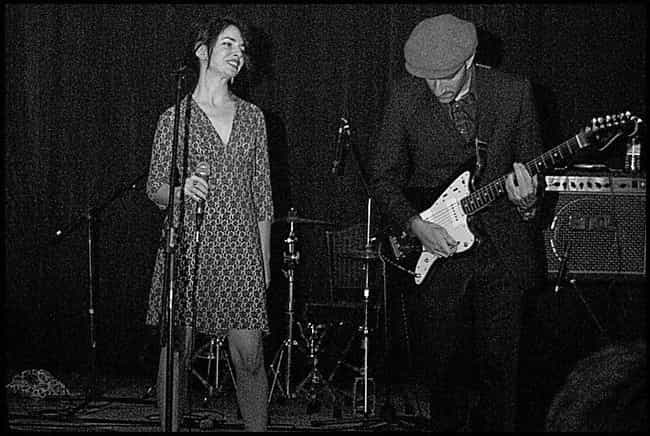 Elysian Fields is listed (or ranked) 1 on the list The Best Rock Noir Bands/Artists