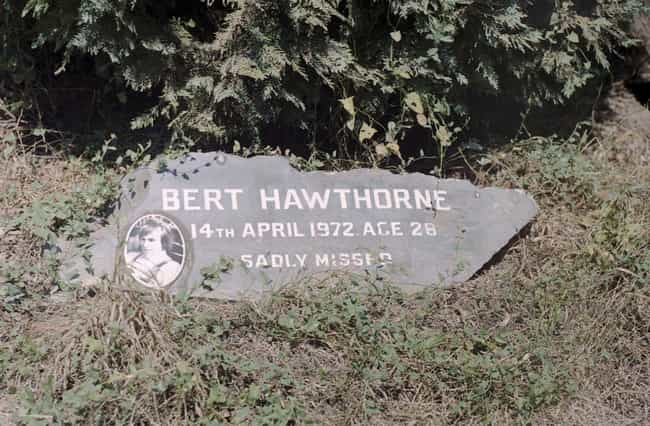 Bert Hawthorne is listed (or ranked) 2 on the list Famous Racecar Drivers from New Zealand