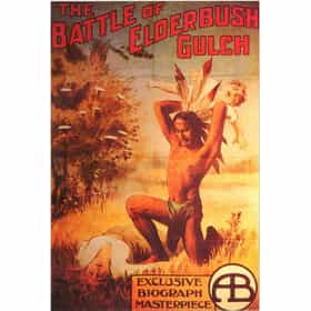 The Battle at Elderbush Gulch