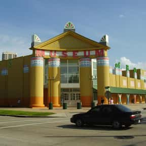 Children's Museum of Houston is listed (or ranked) 11 on the list The Best Children's Museums in the World