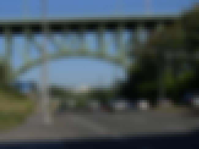 Jose Rizal Bridge is listed (or ranked) 1 on the list Bridges in Washington