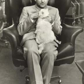 Ernst Stavro Blofeld is listed (or ranked) 17 on the list All James Bond Villains: List of All James Bond Enemies