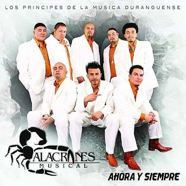 Alacranes Musical is listed (or ranked) 1 on the list The Best Duranguense Bands/Artists