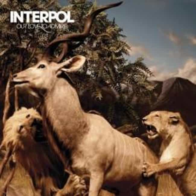 Our Love to Admire is listed (or ranked) 3 on the list The Best Interpol Albums of All Time