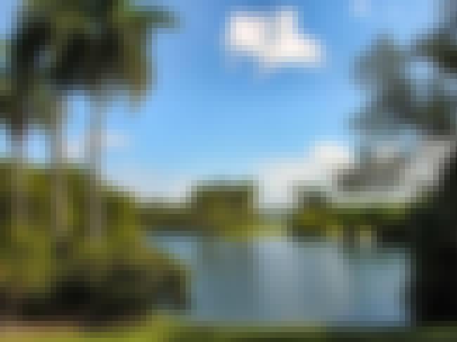 Fairchild Tropical Botanic Gar... is listed (or ranked) 4 on the list The Best American Flower Gardens/Botanical Gardens