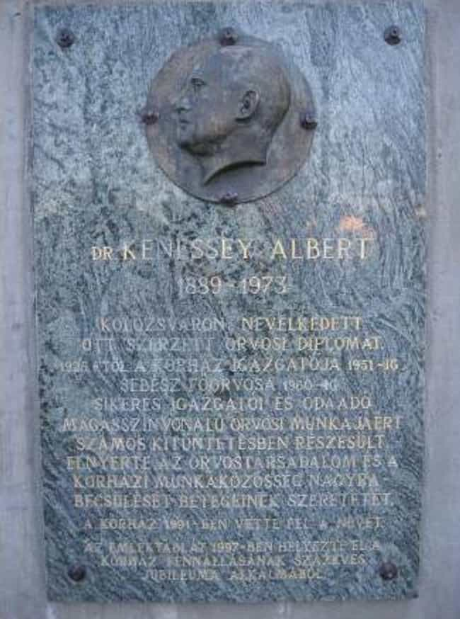 Albert Kenessey is listed (or ranked) 1 on the list Famous Physicians from Hungary